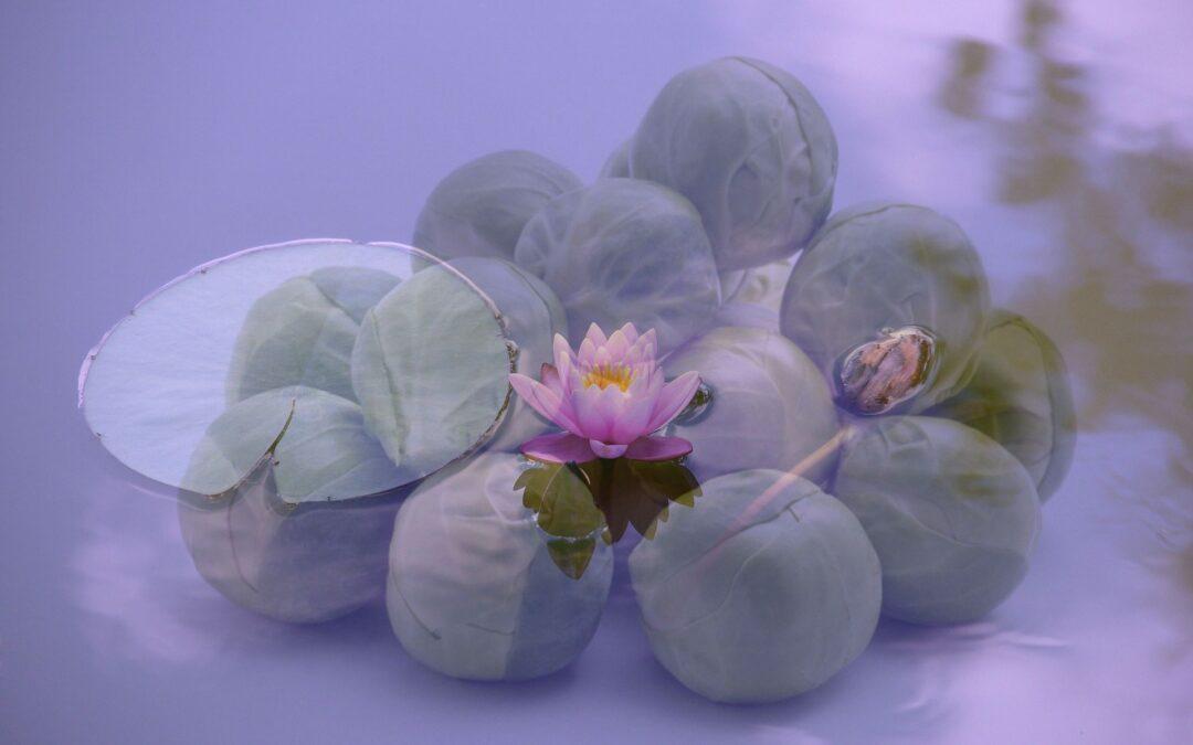 Spiritualiteit en spruitjes